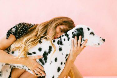 Giornata Internazionale del Cane: il giorno dedicato al miglior amico dell'uomo