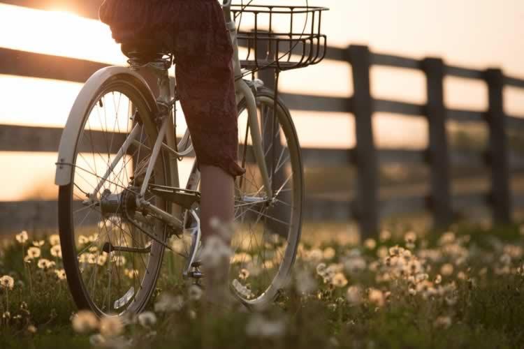 Bonus bici 2020: come richiederlo e i migliori prodotti